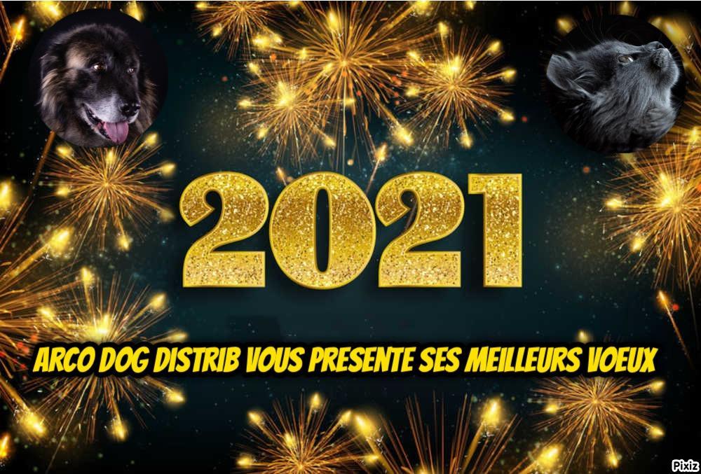 Pixiz 30 12 2020 16 56 28